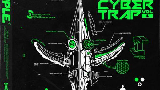 Eliminate – Cyber Trap vst crack